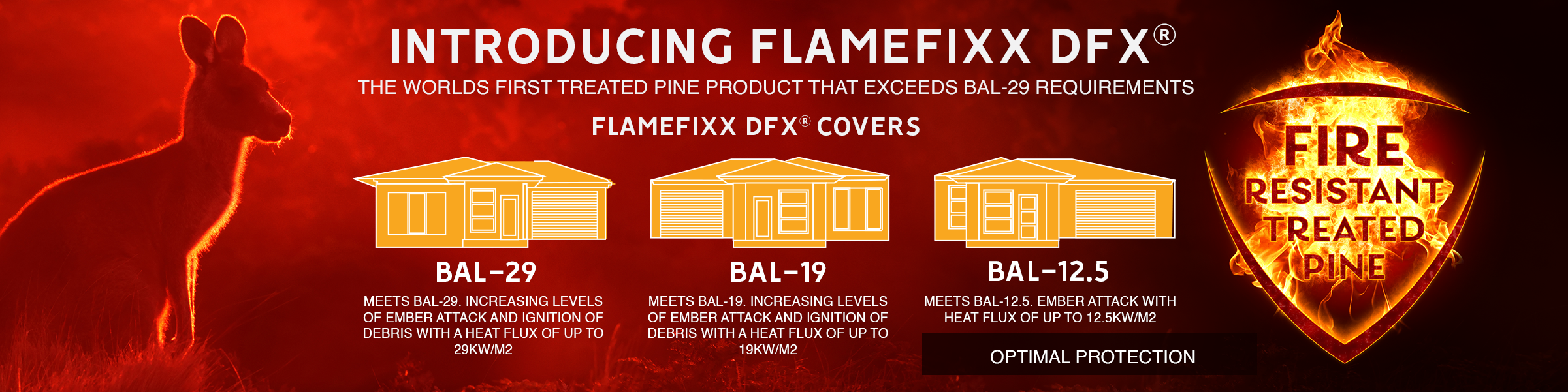 Introducing FLAMEfixx dfx™